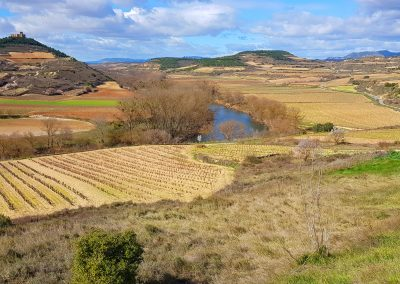 The Rioja Wine Region of the Basque Country