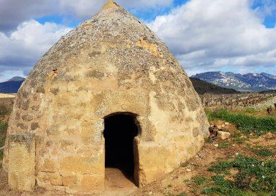 La Rioja Wine Region Vineyard