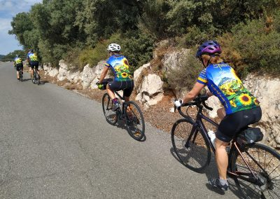 Road Cycling In Spain