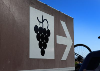 Visit a portuguese winery on your bike tour
