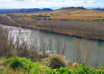 The Ebro, River of La Rioja