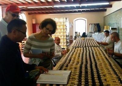 Olive Oil Tasting in Andalucia
