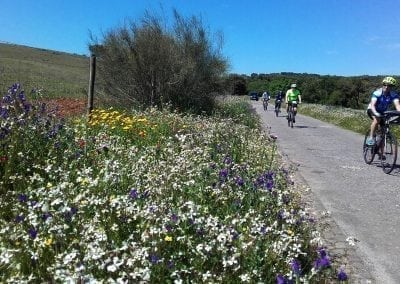 Cycling in the Alentejo