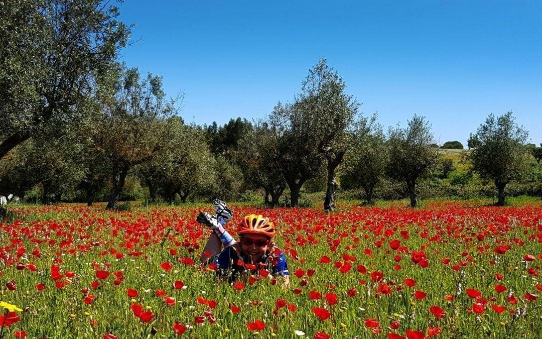 Trans Iberian     €4,825            Spain      17 DAYS