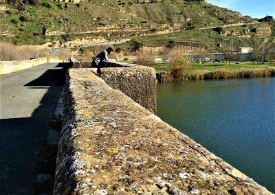 Cycle the Rioja Wine Region