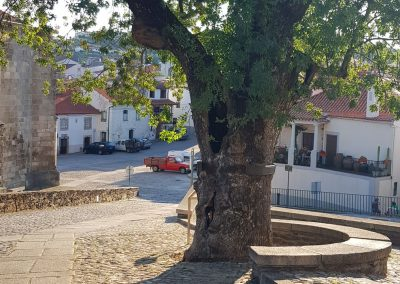 Portugal's Douro region